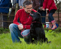 My WINNING DOG!!! Combermere Dog Show photo by Andy Biggar Photography (Otter Spotter)