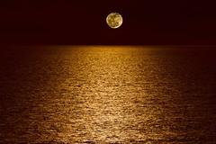 Moon Over Pacific Ocean photo by Kartik J