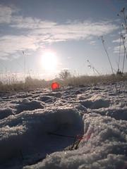 Pics/Art/Red Ball/PICT0736.JPG