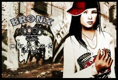 Bronx Design