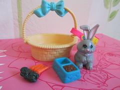 Bunny on the Go photo by Suki Melody
