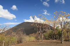 View of Cerro Negro from ranger station 2