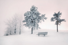 Winter Silence photo by Mikko Lagerstedt
