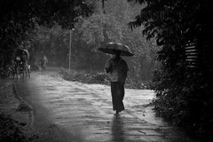 Walking in the Rain photo by Kazi Ashraful Alam