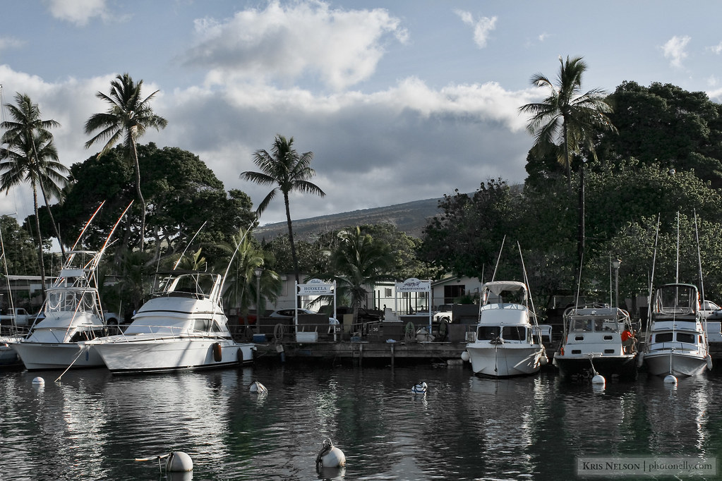 The Lahaina Harbor Experiment