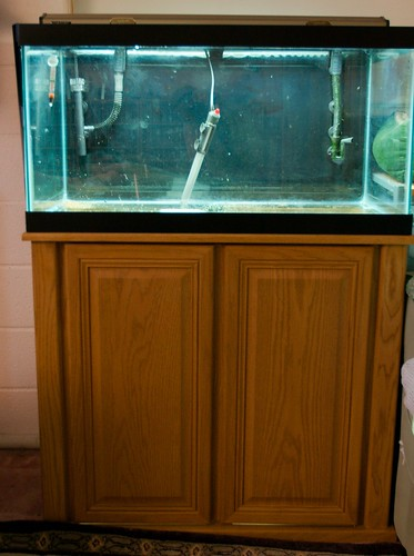 30 gallon fish tank craigslist 30 gallon fish tank for Fish tanks craigslist