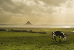 Mont st Michel photo by morosphinx