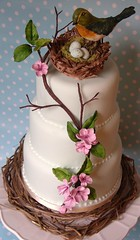 Birds nest cake photo by nice icing