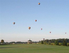 balloons_over_the_dog_park