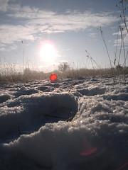 Pics/Art/Red Ball/PICT0734.JPG
