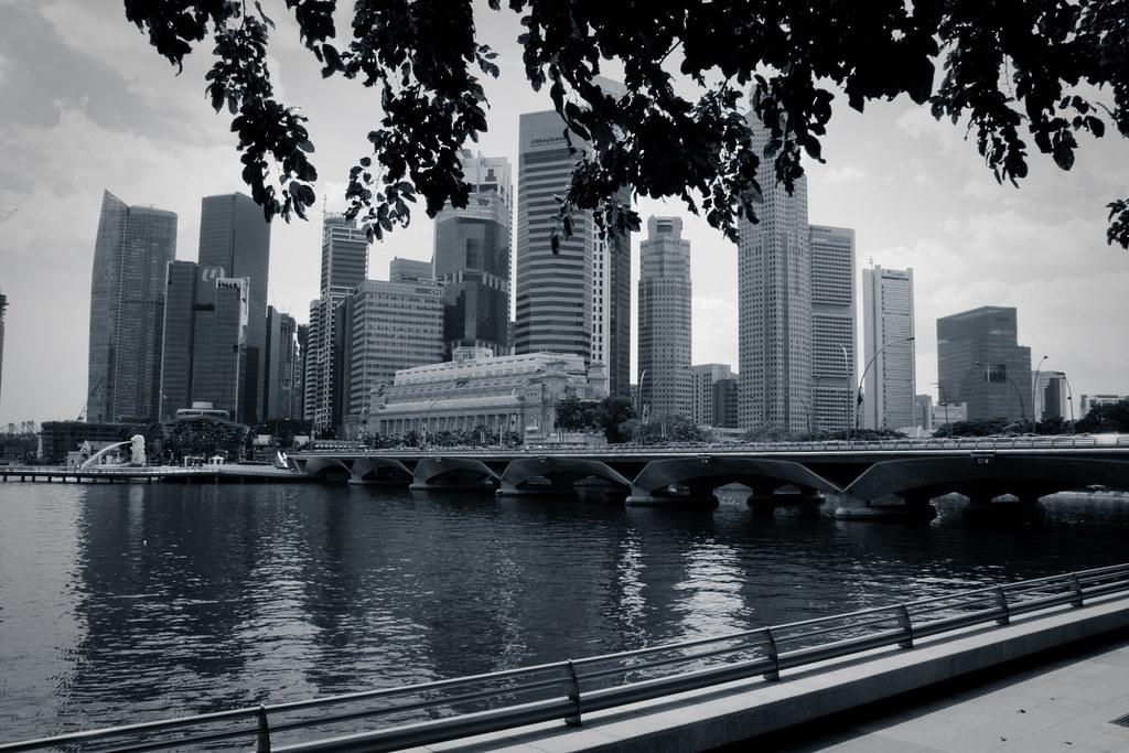 Looking across the Marina from the Esplanade