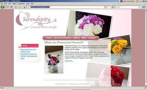 Serendipity Preserved Flowers & Gifts