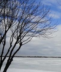 Frozen Richelieu River photo by ThomasD300