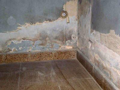 Problemas de humedad en paredes - Como limpiar las paredes de casa ...