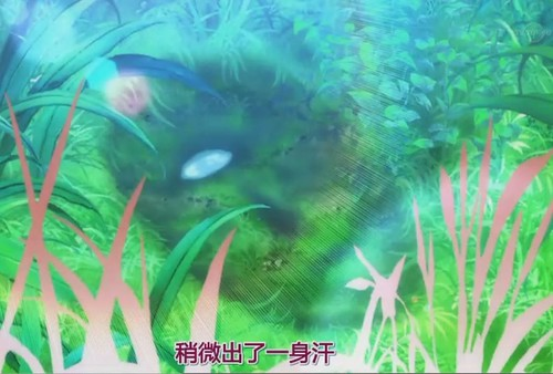 Arakawa epi.08-018.JPG