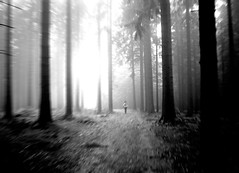 Lost photo by Lexitos <....>