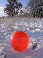 Pics/Art/Red Ball/PICT0749.JPG
