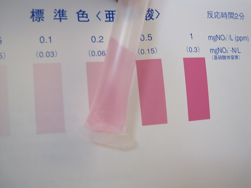 Nitrite-Ion = 0.2. Well water test kit from http://Kyoritsu-lab.co.jp