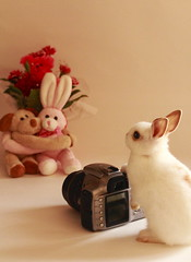 Future Photographer (^0^) photo by ♥ Spice (^_^)