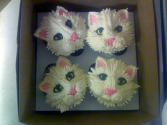 Kittens in a box (1) Katjaskupcakes cupcake photo by katjas Cakes