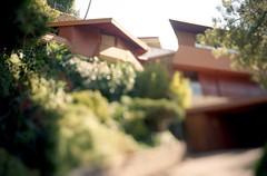 neighbor al/house photo by JStark 4