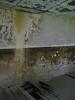 4679341144_6fc5437abe_t