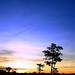 hello sunset