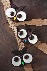 Oreo Cookies & Cream Owl Cupcakes photo by Xiaolu // 6 Bittersweets