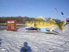World's Largest Walleye