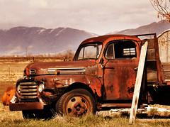ford rusty truck near clinton overlay sepia darker sky photo by houstonryan