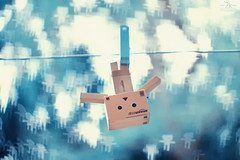 Explored! - You never know when a Danbo would enter your life.. :D photo by 2k Photography
