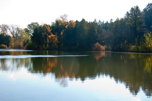 Morton Arboretum-2