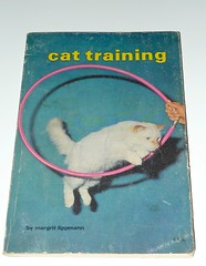 CAT TRAINING photo by the_moog