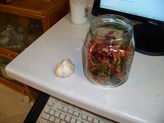 dried chilis with garlic