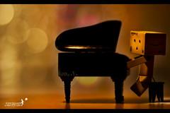 Musically Talented photo by achew *Bokehmon*