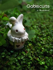 The white rabbit photo by Gabiscuits