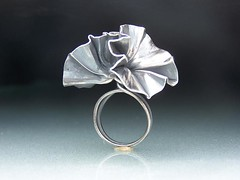 Sterling Silver Foldformed Ring IV photo by Cynthia Del Giudice