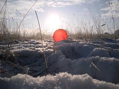 Pics/Art/Red Ball/PICT0731.JPG