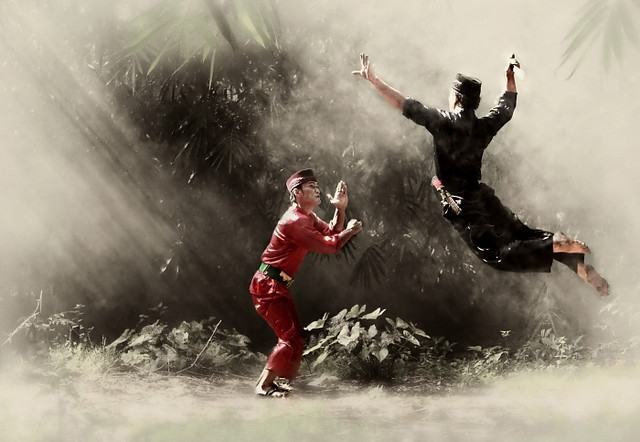Indonesian Martial Art - Pencak Silat | Flickr - Photo Sharing!