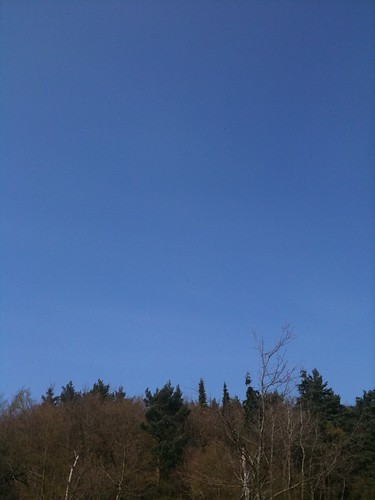 The skies over Virginia Water. No clouds and no planes.