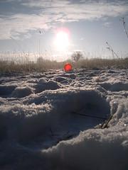 Pics/Art/Red Ball/PICT0735.JPG