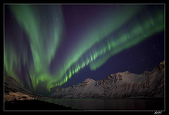 Aurora plays a tune photo by Ole C. Salomonsen