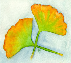 Day 4: Ginkgo Leaves