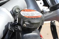 Radiator Fill Cap