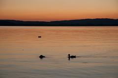 Sonnenuntergang am Sembacher See