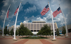 Disney's Contemporary Resort photo by BR WDW