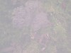 4885783835_d52eefe1f9_t