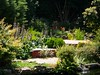 Jardin Juillet 2010