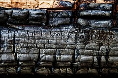 Charred photo by WK Imagery