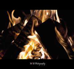 Burning Logs photo by mariosworld343